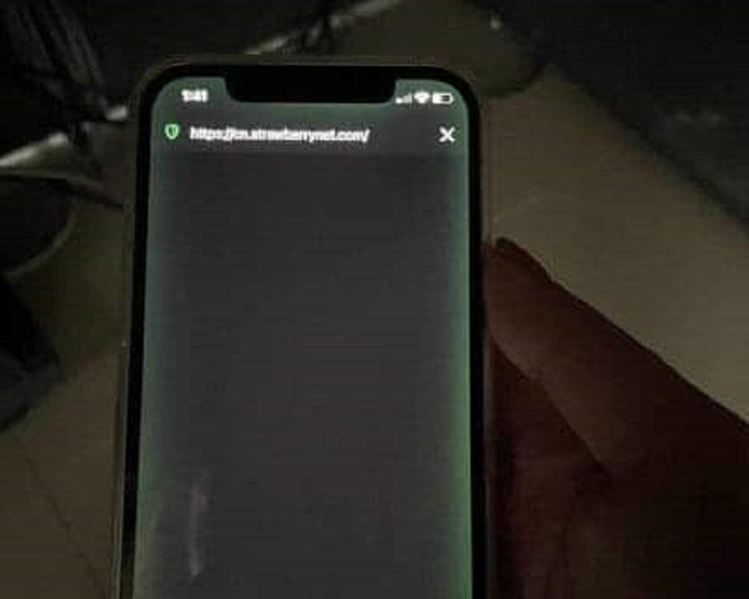 Mezi e pritën të hidhej në treg, lum ankesash nga klientët për iPhone 12: Ekranet bëhen jeshil